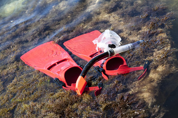 Red flippers on the coastline. Snorkeling gear for diver.