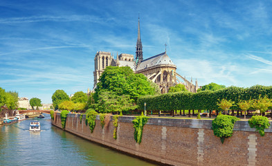 Fototapete - Notre Dame Cathedral in Paris from the nearby bridge