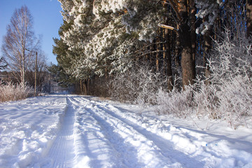 Winter road in the countryside on a clear frosty day