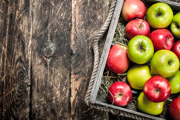 box with fresh red and green apples.