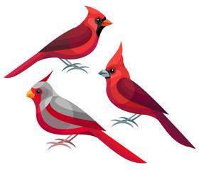 Stylized Birds - Northern, Vermilion and Desert Cardinals
