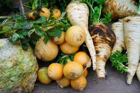 Colorful fresh winter root vegetable at a French farmers market