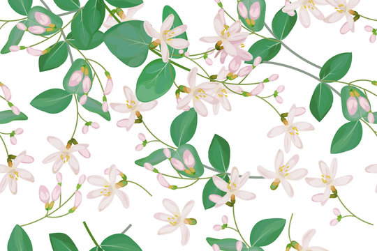 Seamless pattern with honeysuckle 1