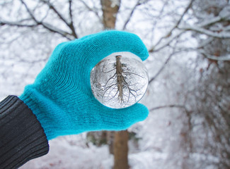 crystal photography ball in front of a tree on a sunny day during the cold winter season with snow on the ground
