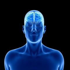 Illustration of human brain against black background