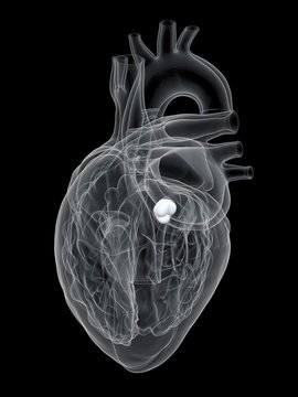 Illustration of human heart aortic valve on black background