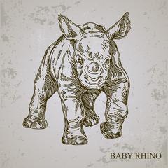 Baby animals. Wild. Rhino. Vintage style. Vector illustration.