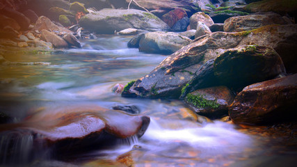 Magical Fantasy Sunlight Colorful Shinning over a Creek or River in the Smoky Mountains
