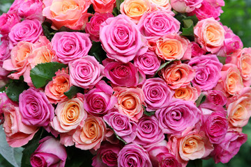 Large bouquet of multicolored roses