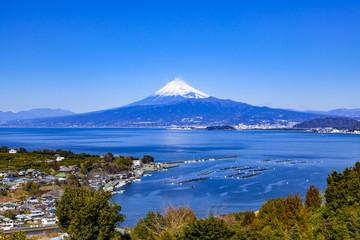 Wall Mural - 静岡県沼津市西浦木負から富士山を望む