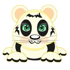 Drawing animal panda