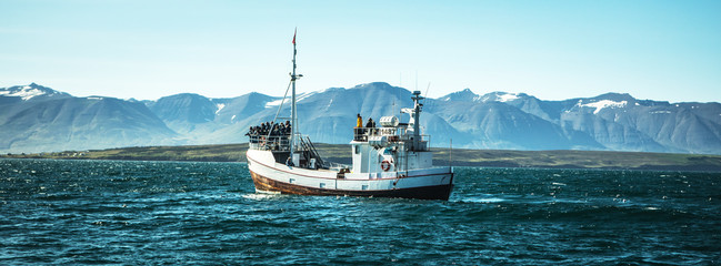 Papiers peints Peche Icelandic fishing boat for whale watching.