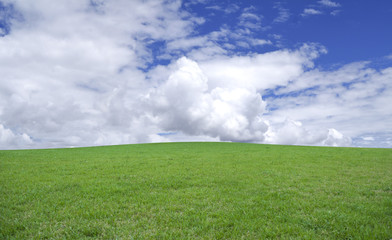 Green grass and blue sky. Very simple country landscape.