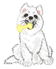 Photo sur cadre textile Croquis dessinés à la main des animaux Husky, White Husky, Dog, Puppy, Friend, Pet, Illustration, White Dog, Furry Dog, White Puppy, Husky Puppy, year of dog, hold, food, eat, bone