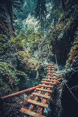 Abandoned old wooden bridge with backup metal chain in the deep wild mingled forest. Road to nowhere. Outdoor extreme activities in the Tatras Mountains in Slovakia. Wild nature.