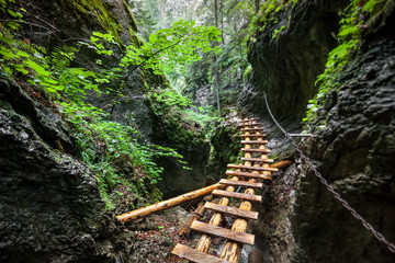 Hard way through the canyon in the Tatra Mountains, Slovakia. The abandoned old wooden bridge going to nowhere in deep wild mingled forest. Outdoor extreme leisure. Wild nature. Artistic retouching.
