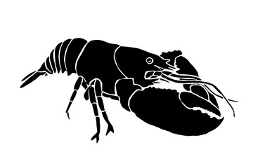 Graphical crab isolated on white background,vector illustration