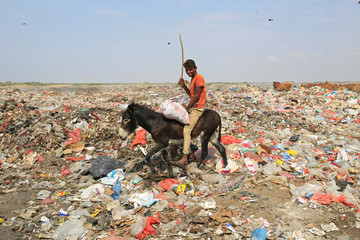 A boy rides a donkey as he collects recyclables from a garbage dump on the outskirts of the Red Sea port city of Hodeida