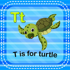 Flashcard letter T is for turtle