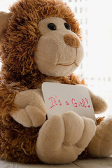 Teddy bear holds an announncement card for baby girl, space for text.  New arrival in the family