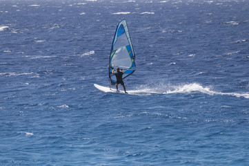 windsurfer on a board under a sail against the background of the sea, wind and waves.