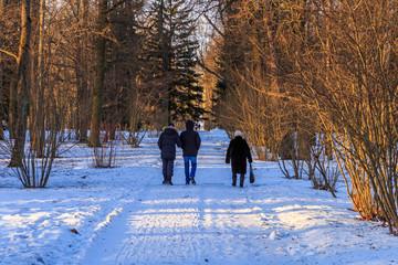 Catherine Park in Pushkin in winter