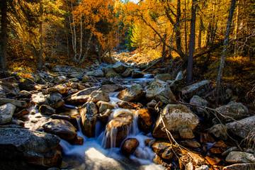 automne sur le banh de tredos
