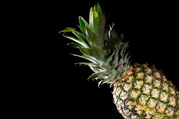 Delicious fresh yellow pineapple tropical fruit on black background