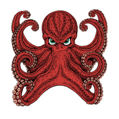 Octopus. Vintage cartoon character