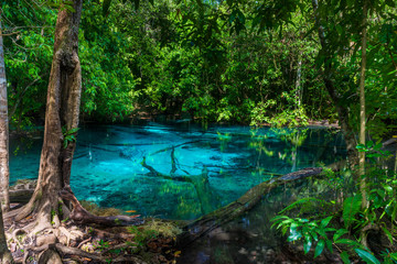 A picturesque blue lake in the jungle of Thailand in Krabi