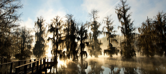View of landscape bayou at sunrise in fog