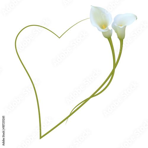 Realistic white calla lily romantic frame, heart. \
