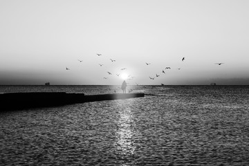 Autumn seascape at dawn. Silhouette of girl on pier. Flock of seagulls flying over sea. Rising sun...