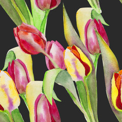 Stylized tulips flowers illustration. watercolor