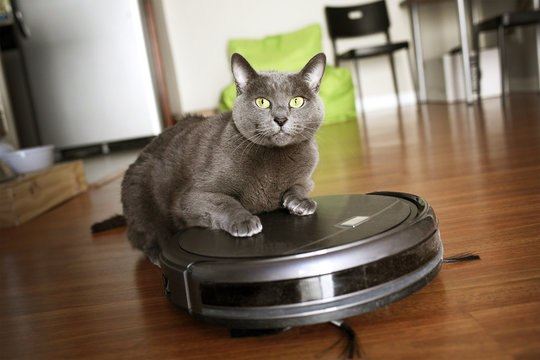 Pet friendly smart vacuum cleaner