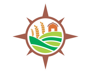paddy wheat icon agriculture agricultural harvest farming image vector