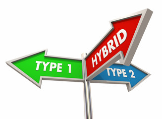 Hybrid Combining Two Types Between Combination Signs 3d Illustration
