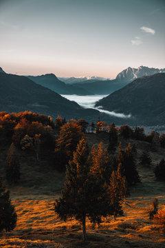 Sonnenaufgang in den Bergen mit Sonnenstrahlen in den Herbstlichen Bäumen und einem vernebeltenm Tal mit Bergen im Hintergrund