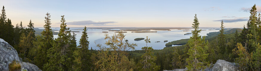 Panoramic landscape view. Koli National Park. Pielinen area. Finland