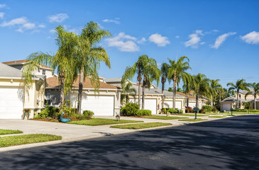 Typical gated community houses with palms and asphalt road, South Florida Wall mural