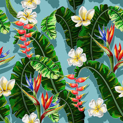 Seamless pattern with tropical flowers. Strelicia, plumeria and banana leaf hand draw vector illustration.