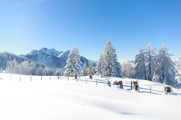 Fototapete - Winter in Austrian Alps