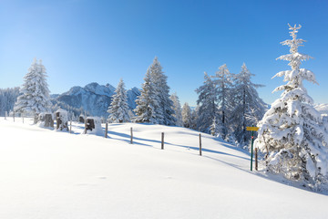 Fototapete - Beautiful winter landscape. Austrian countryside with a lot of snow