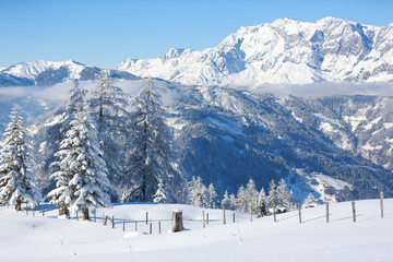 Fototapete - Winter landscape in Austrian Alps