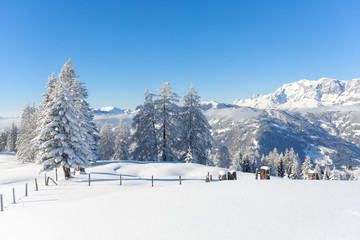 Fototapete - Austrian Alps. Beautiful winter landscape