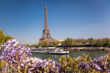 Fototapete - Eiffel Tower with boat during spring time in Paris, France