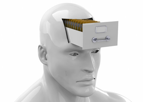 Memories in the Brain -3D