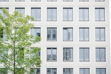 moderne Hausfassade und Baum