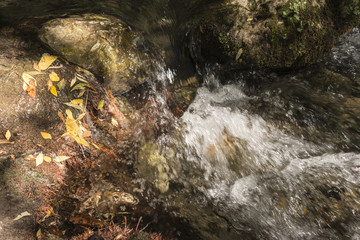 River between stones with autumn leaves