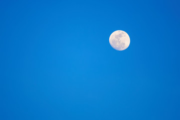 The moon on the blue sky. Evening's shot.